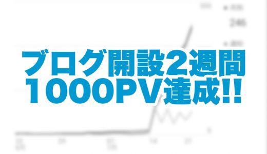 ブログ開始2週間で1000PV達成!ブログに没頭できてるけど稼げる気がしねえ!