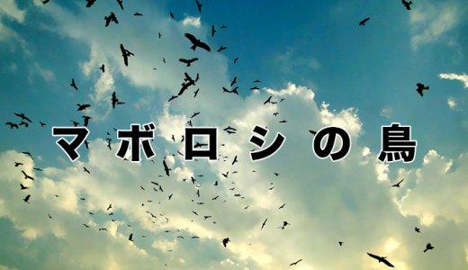 【サルベージ日記】「マボロシの鳥」(2010年10月25日)